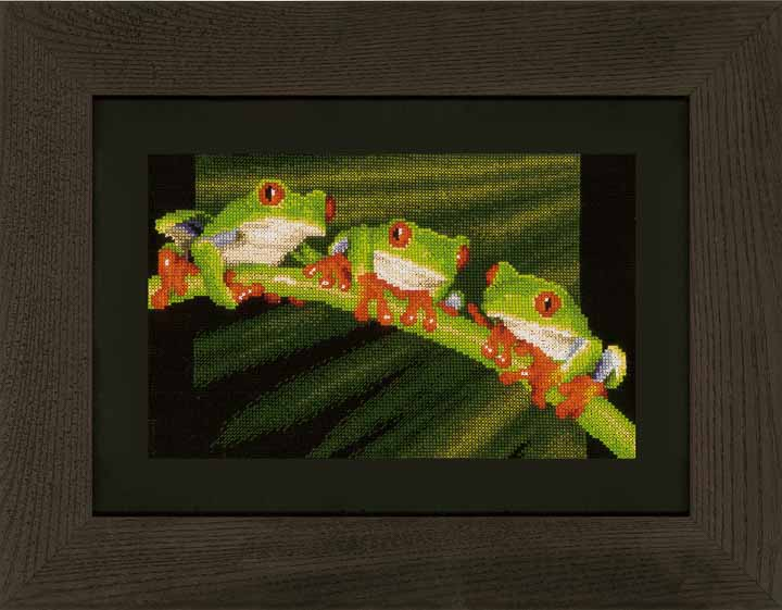 Counted Cross Stitch Kit: Red Eye Tree Frog Trio Animals & Birds CSK