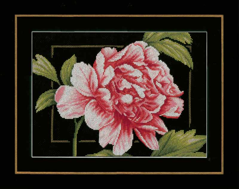 Lanarte Counted Cross Stitch Kit: Pink Rose (Aida)
