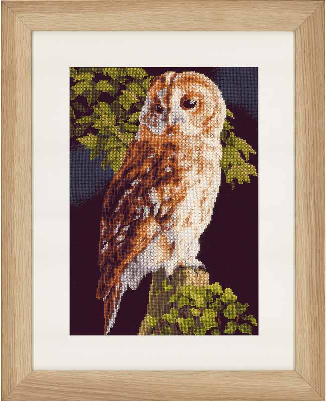 Lanarte Counted Cross Stitch Kit: Owl (Aida,B) Animals & Birds CSK