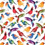 Conservatory Digital Birds Multi on White Fabric