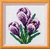 Crocus Cross Stitch Kit