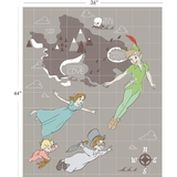 Disney Peter Pan In Grey Fabric Panel