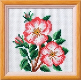 Dog Rose Cross Stitch Kit