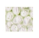 Ivory Oval Faceted Pearls 100pk