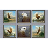 Majestic Eagles Patches on Grey Fabric Panel
