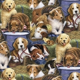 Puppies In The Barn Fabric