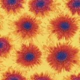 Spaced Multi Tie Dye on Yellow Fabric