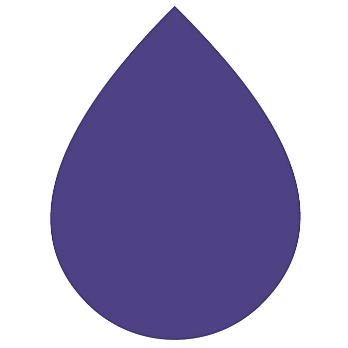 Rit Dye: Liquid Dye: Royal Purple | RITDM_49  2