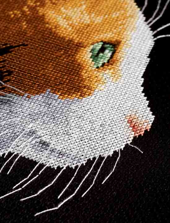Counted Cross Stitch Kit: Kitten