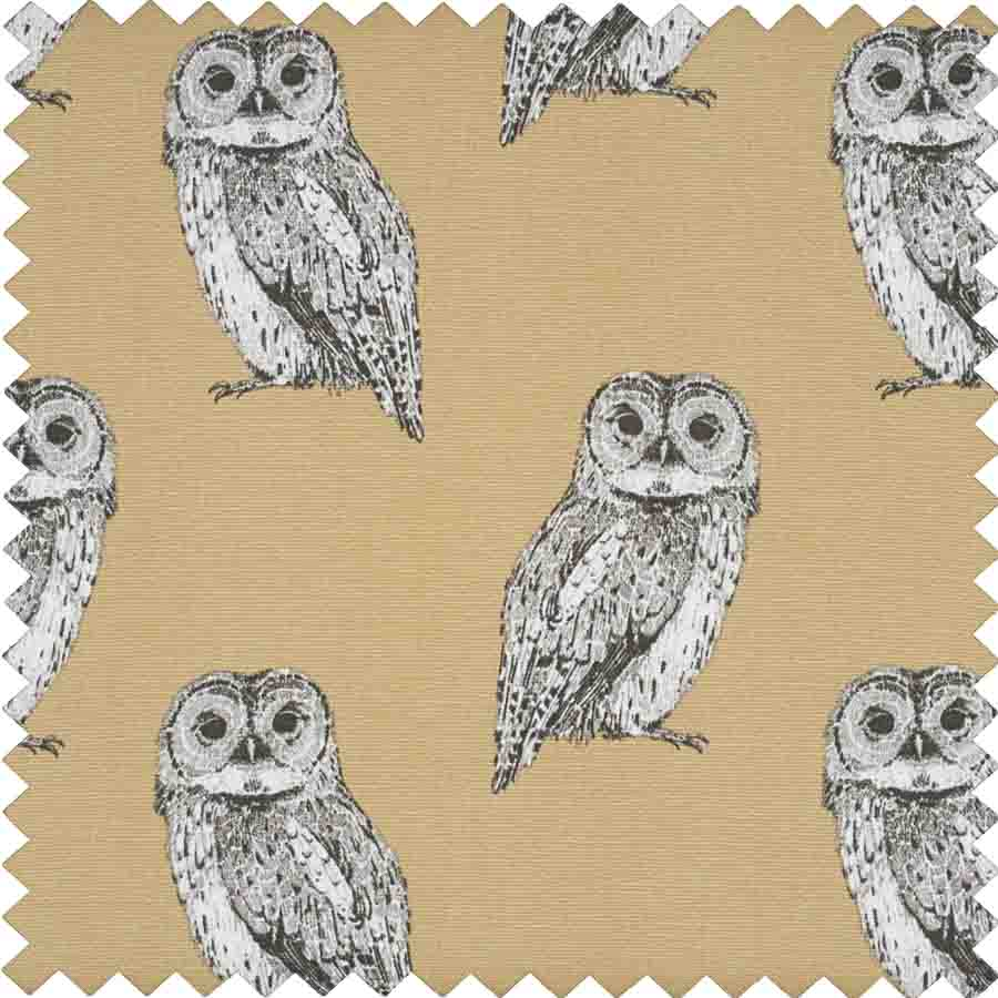 HobbyGift Premium Collection: Fold Over Sewing Box: Owlet | HGFB_452 Bird Print Sewing Box 2
