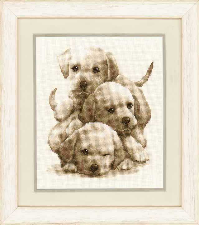 Counted Cross Stitch Kit: Labrador Puppies Cats & Dogs CSK