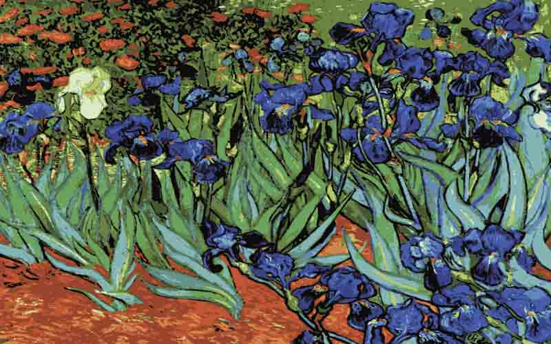 Collection D Art Printed Tapestry Canvas: Irises, (Van Gogh) Flowers & Nature PTC