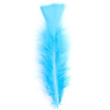 Turquoise Turkey Feathers